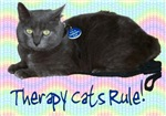 Therapy Cats Rule!