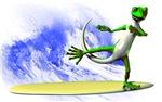 Surfing Gecko