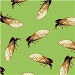 Cicada Pattern