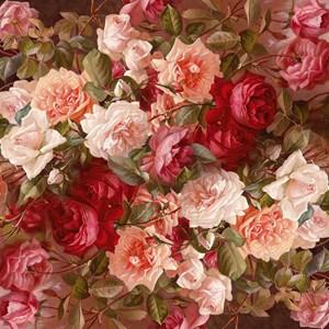 Floral Pink Roses