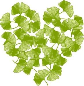 Ginkgo Leaf Heart