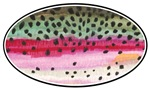 RAINBOW Trout Skin Oval