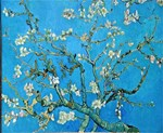 Famous Painting: Van Gogh's Almond Blossoms