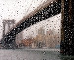 Brooklyn Bridge: Wet Series