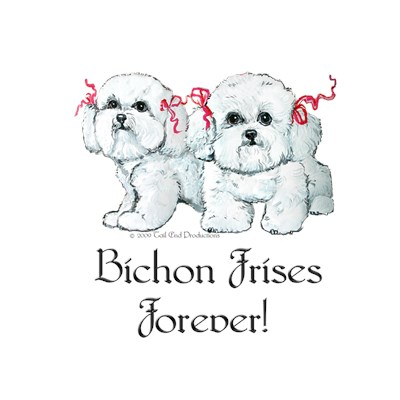 BICHON FRISE COLLECTION!!