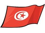 Tunisian Flag T-Shirts