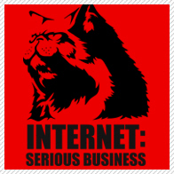 the internet: serious business