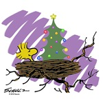 Festive Nest