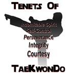 Traditional Taekwondo Tenets