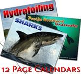 12 Image Wall Calendars
