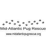 MAPR Pug Prints