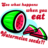 Don't Swallow Watermelon Seeds