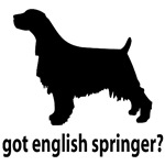 Got English Springer?