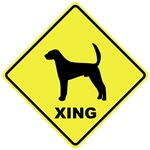 American Foxhound Crossing