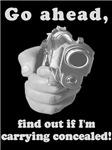 Concealed Gun CCW