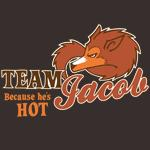 Team Jacob: Because He's Hot