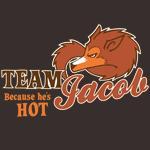 Team Jacob: Because He's Hot