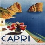 Vintage Capri