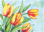 Tulips Watercolor