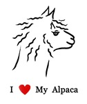 I Love My Alpaca