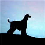 Afghan Hound Blue Sunset