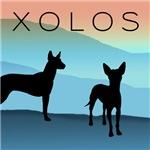 Blue Mountain Xolo