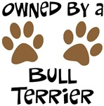 Owned By A Bull Terrier