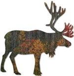 Moose T shirts, Moose Shirts, Moose Gifts