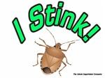 Stink Bug Stink