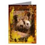 Fall/Thanksgiving Greeting Cards