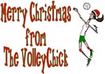 VolleyChick Holiday Cards