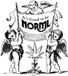 It's Good to Be Norml (Cherub)
