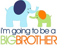 Elephant Big Brother