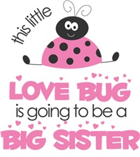 Pink Love bug Big Sister