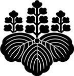Paulownia (Kiri)