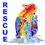 Cat & Dog Rescue