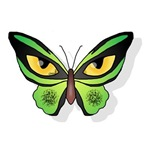Butterfly Dept