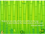 Bamboo - Nature Quote