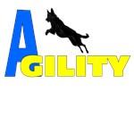 agility b y