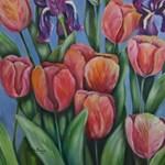 may tulips1