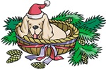 Christmas Puppy In A Basket For The Holidays!