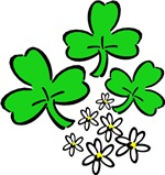Irish Shamrocks and Gift Ideas