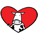 Cow T-Shirt and Gift Ideas