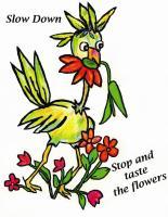 Taste the Flowers