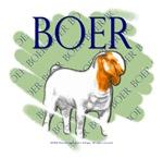 All Boer