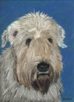 Dogs, Click for Breeds Artwork & Photos