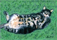Cats, Click here for Cat Paintings & Photos