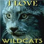 I Love Wildcats