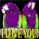 Two Parrots I Love You