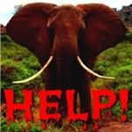 Help Elephant